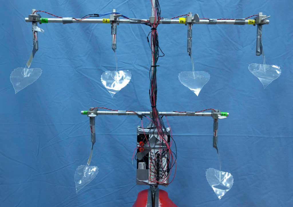 Curtis Mosher, Eric Henderson and Michael McCloskey have developed a biomimetic tree that produces electricity when wind blows through its leaves.  (Christopher Gannon/Iowa State University)