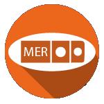 Espacios web especializados - Medidas Eléctricas Reglamentarias